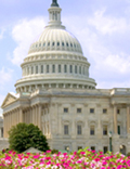 Image of US senator proposes national Clean Energy Standard (CES) highlighting CHP article